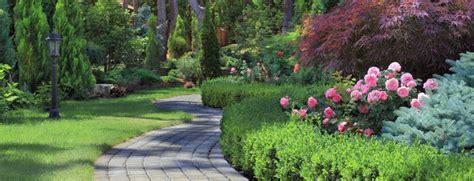 manutenzione giardini torino giardiniere giardinaggio parchi torino piscine potature