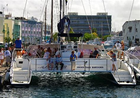 catamaran barbados cool runnings cool runnings ii picture of cool runnings catamaran