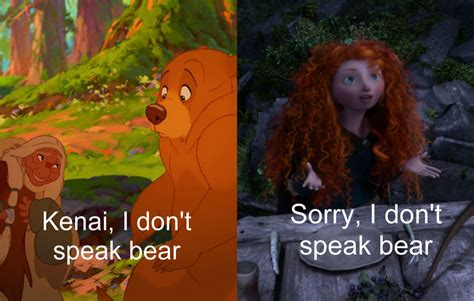 bears dont read i don t speak bear disney princess photo 34172542 fanpop