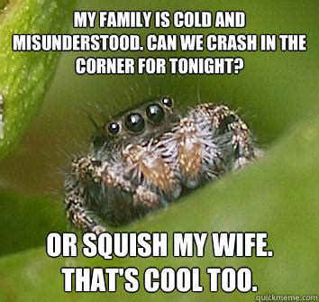 Misunderstood Spider Meme - my family is cold and misunderstood can we crash in the