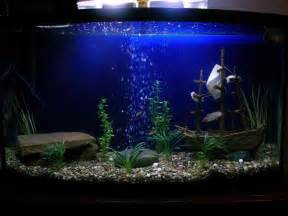 decoration how to create aquarium decoration themes pet