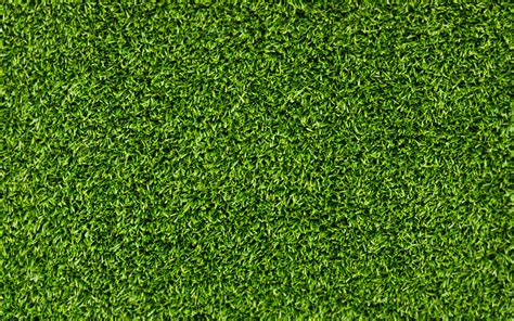 green grass wallpaper download wallpaper background grass green texture