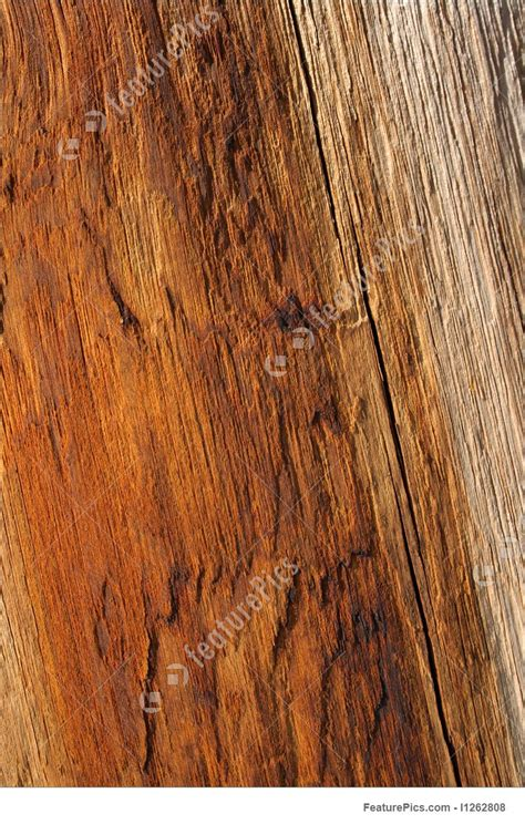 texture warm orange color of wood stock picture