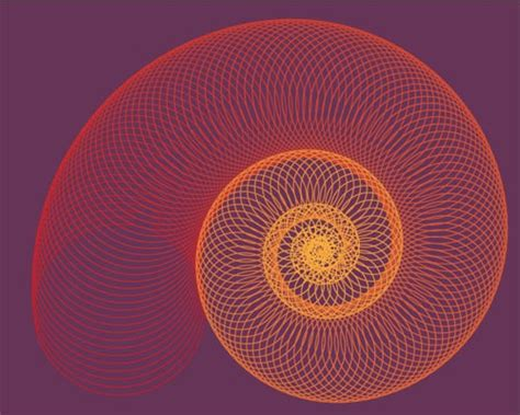 spiral pattern illustrator the best vector tutorials and freebies from january 2011