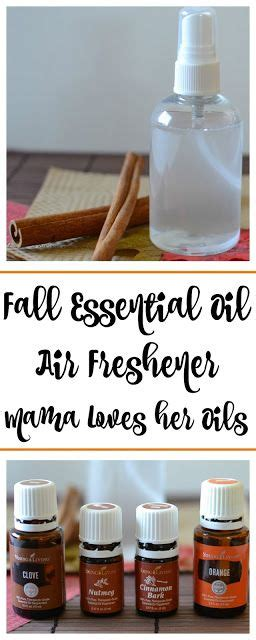 Essential Air Freshener Spray Recipe 17 Best Images About Oils On