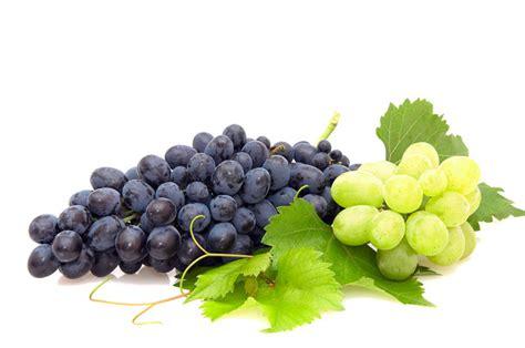 imagenes de uvas y pan moc winogron dla twojej sk 243 ry jejświat pl
