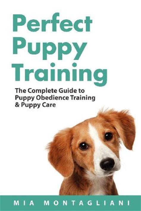 flight instructor guide the comprehensive guide to prepare you for the faa checkride guide series books 49 best images about doggie tlc on
