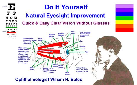 your own finding clear vision in the age of indoctrination books eyesight improvement bates method free do it