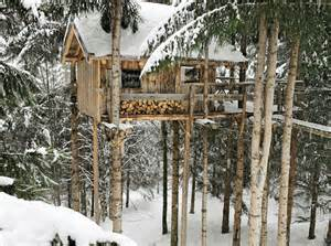 Tree Houses To Live In Treehouse To Live In