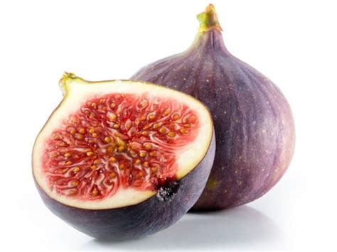 can dogs eat guava can dogs eat figs organic facts