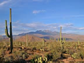 In the arizona desert a family vacation trailing in florida