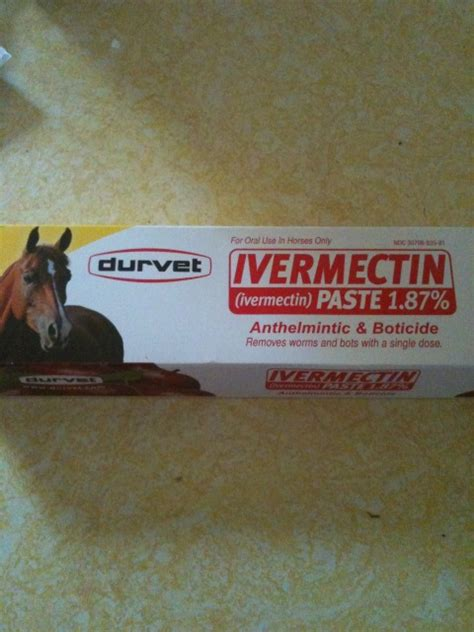 ivermectin dogs dosage for ivermectin paste for dogs doberman forum doberman breed forums
