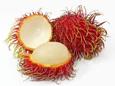 gambar buah rambutan gambar gratis