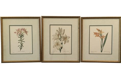 Set Vintage 3 vintage framed botanical prints set of 3 chairish