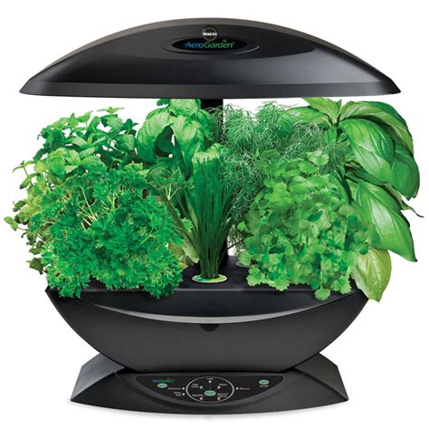 hydroponic herb garden kit aerogarden miracle gro hydroponic garden whyrll com