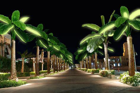 palm tree solar lights solar trees and solarskin help hide solar panels