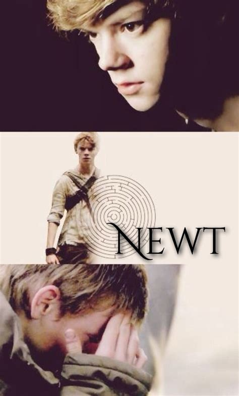 arti film maze runner 25 best ideas about maze runner series on pinterest the