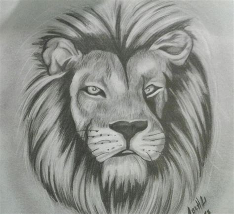los mejores dibujos de animales mis mejores dibujos arte y apuntes y monografias