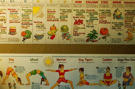 Yogic Diet by Diet Information With Chart What You Should Eat