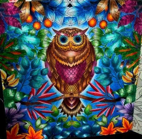 Johanna Secret Bersemi Di Rusia minha coruja jardim secreto johanna basford pintada por mim jessicasantin coloring books