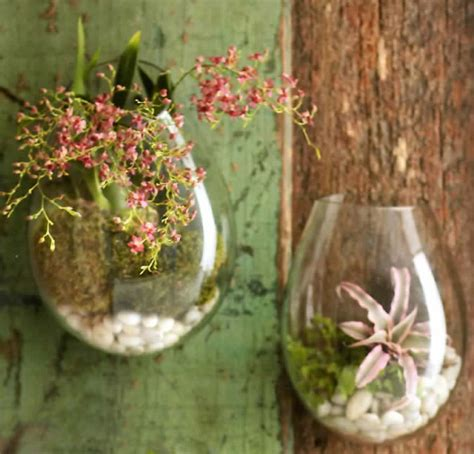 Decorative Wall Planters by Recycled Glass Wall Terrarium Terrariums Other Metro