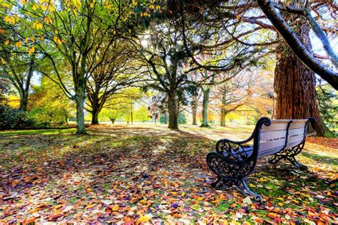 bench at the park bench at the park wallpaper allwallpaper in 10998 pc en