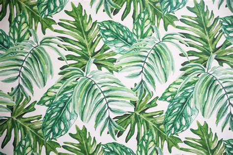 palm leaf temporary wallpaper video daily dose  charm