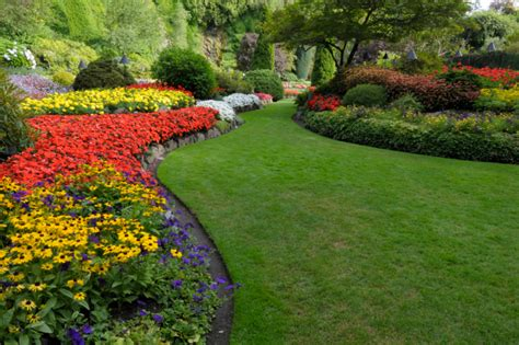 We utilize the best practices of lawn maintenance and care
