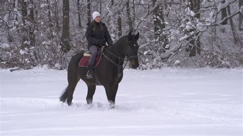 horseback winter garden happy beautiful boy and showered with snow