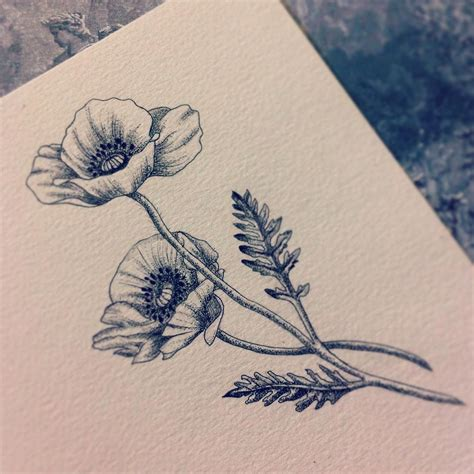 poppy flower tattoo designs see this instagram photo by beaubealart 122 likes