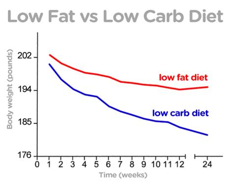 23 studies on low carb and low fat diets time to retire how to lose weight fast for women in 3 easy steps