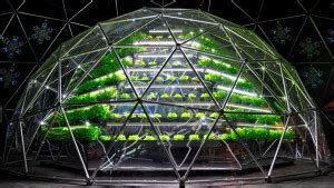 indoor grow room supplies how to protect hydroponic grow room during winter