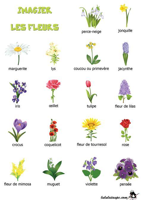 Imagier Les Fleurs 1 Lulu La Taupe Jeux Gratuits