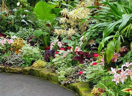 Tropical Flower Garden Garden Pinterest Tropical Flower Garden