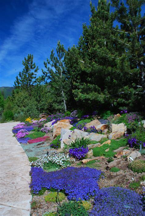 photo gallery betty ford alpine gardens