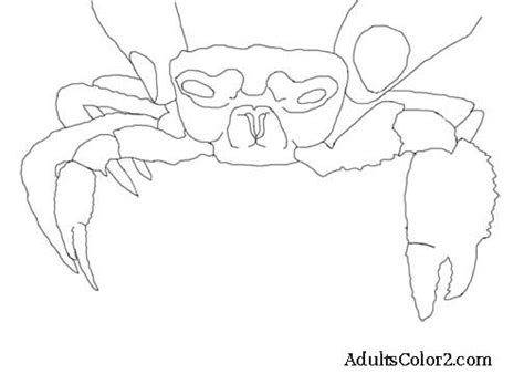ghost crab coloring page crab coloring page cantankerous crustaceans