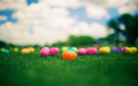 colorful easter wallpaper colorful easter eggs 28240 2560x1600 px hdwallsource com