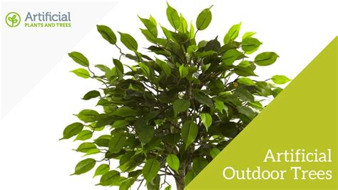 artificial outdoor trees the ultimate guide to artificial outdoor plants