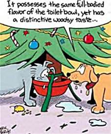 funny christmas pictures 32 pics