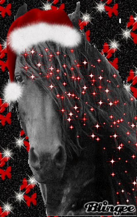 friesian christmas picture  blingeecom
