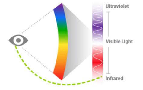 how does infrared light work human eye can see invisible infrared light sciencedaily