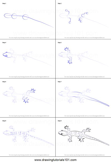 how to draw a doodle step by step how to draw a lizard printable step by step drawing sheet