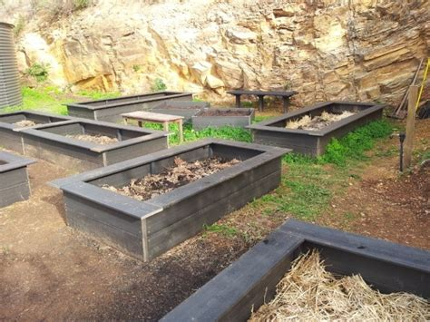 plastic raised garden bed kits pin by kirsten on green thumbs