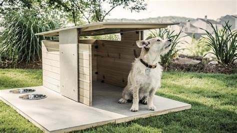 modern dog houses modern dog houses modern dog house