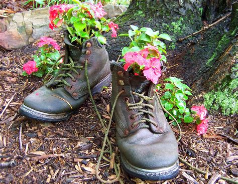 Boot Planter by Inside Secret Garden Day To Day Living At Cairnwood Cottage Bad Bad Chickens