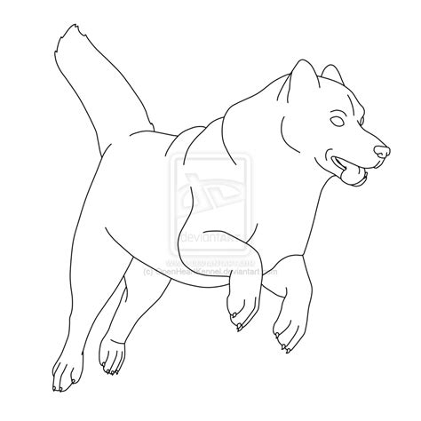 siberian husky coloring book stress relief coloring book for grown ups animal coloring book books siberian husky jumping by kangaleer kennels on deviantart