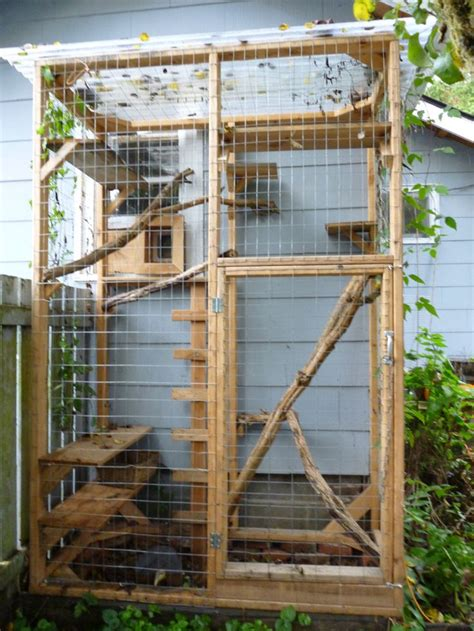 outside cages 25 best ideas about cat cages on outside cat enclosure outdoor cat cage