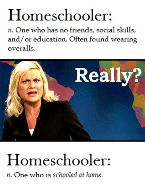 Home School Meme - an update on writing and life complete with memes the