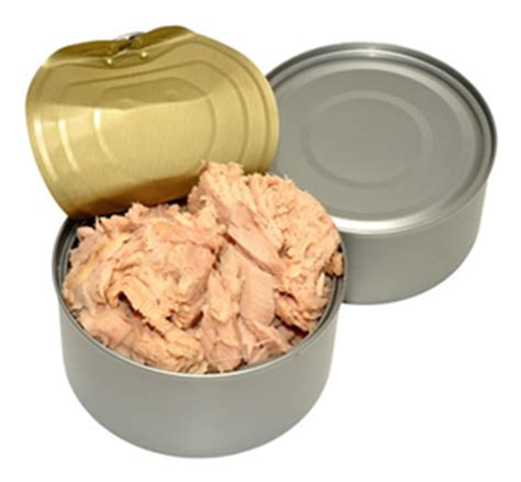 Tuna Ish Given For Autistic Detox by Canned Tuna What About Mercury Timetocleanse