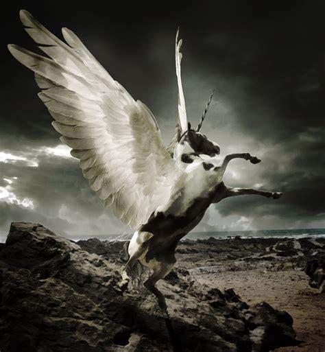 imagenes de unicornios con alas pegasos y unicornios taringa